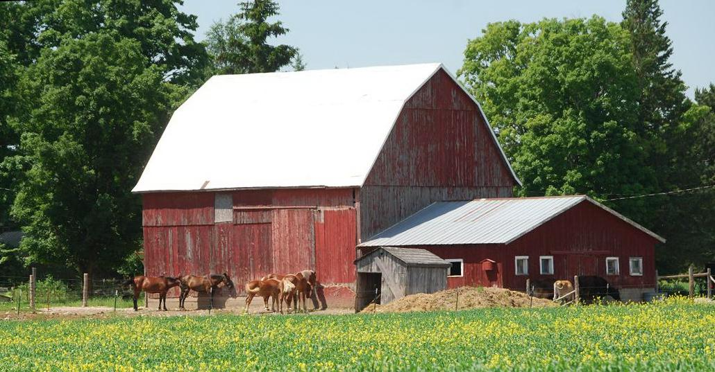 Barns Of Mackinac County Michigan